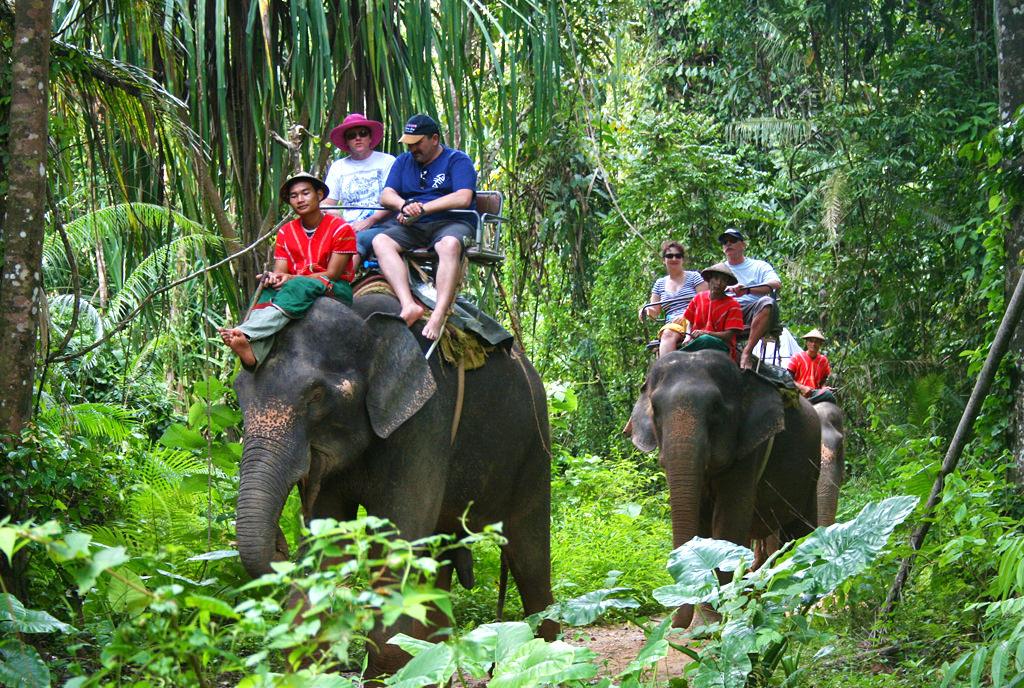 top-elephant-trekking-camps.jpg